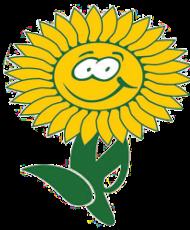 Blumen Heinen
